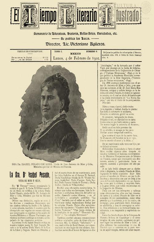 Imagen de El tiempo literario ilustrado : semanario de literatura, historia, bellas artes, variedades, etc. Número 6