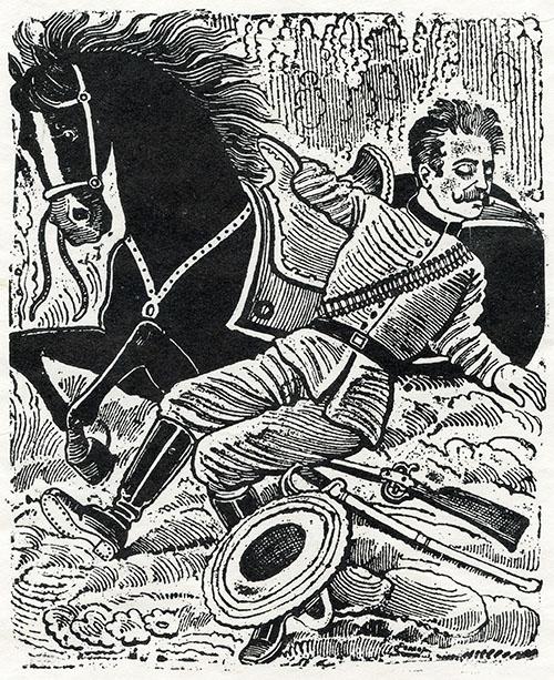 Imagen de Muerte de un Revolucionario