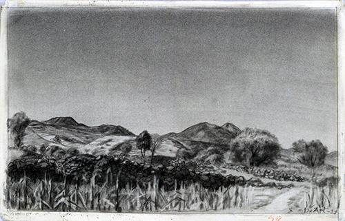 Imagen de Alrededores del Ajusco